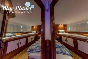 Front cabins