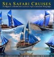 KLM Sea Safari 8