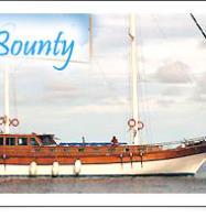 Ensis Bounty