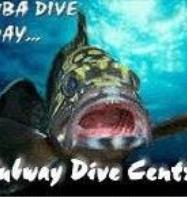 Subway Dive Centre