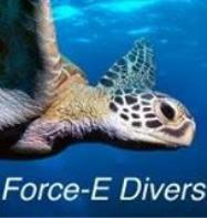 Force-E