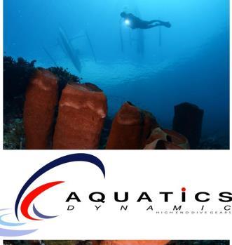 aquatic dynamic