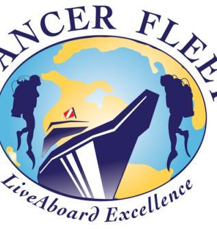 Dancer Fleet