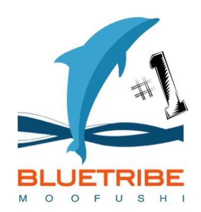 Diving Bluetribe Moofushi