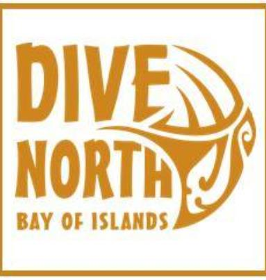 Dive North