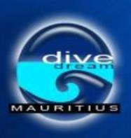 Dive Dream Divers