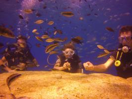 Green Bay, Discover Scuba Diving