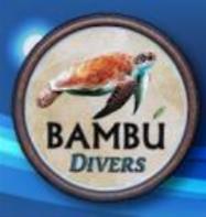 Bambu Divers