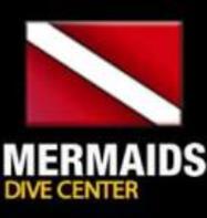 Mermaids (Centara Grand)