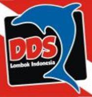 Dolphin Dive School Lombok