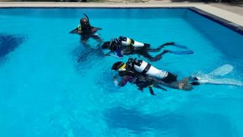 Open Water Pool Training