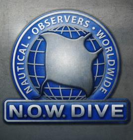 Now Dive