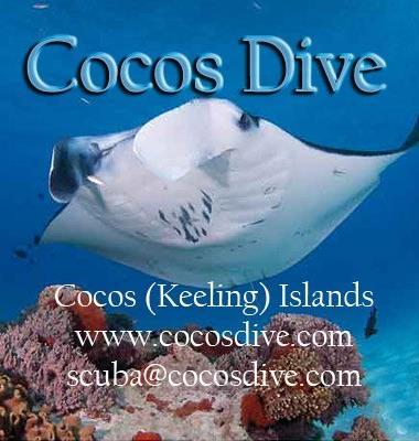 Cocos Dive