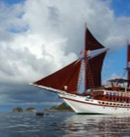 KLM Seamore Papua