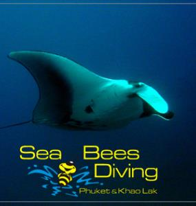 Sea Bees Diving - Phi Phi Island