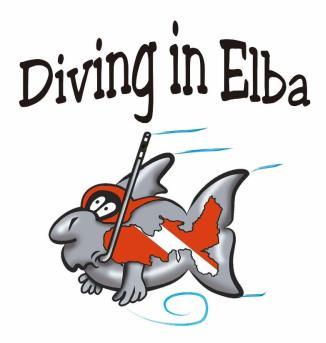 Diving in Elba (Biodola)