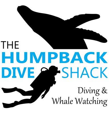 The Humpback Dive Shack