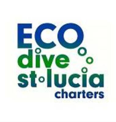 ECO Dive St.Lucia