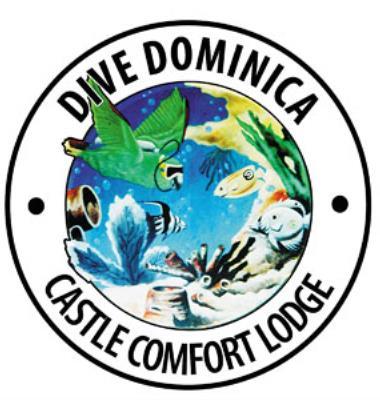 Castle Comfort Dive Lodge