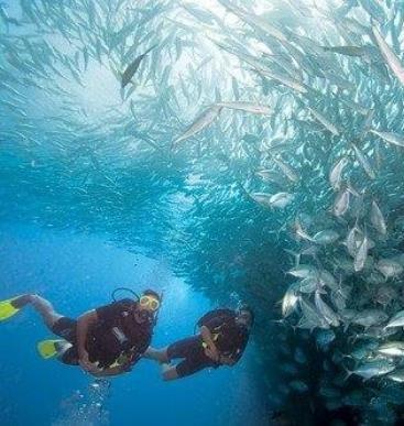 Iboih Dive Centre