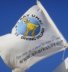 Sharks Bay Diving Club