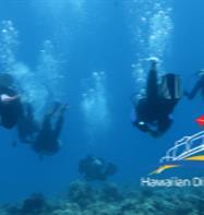 Hawaiian Diving Adventures