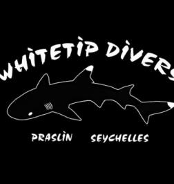 Whitetip Divers