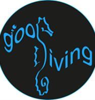 GooDiving