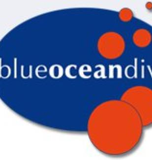 Blue Ocean Dive