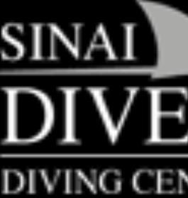 Sinai Divers Backpackers