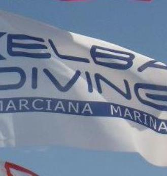 Elba Diving Center