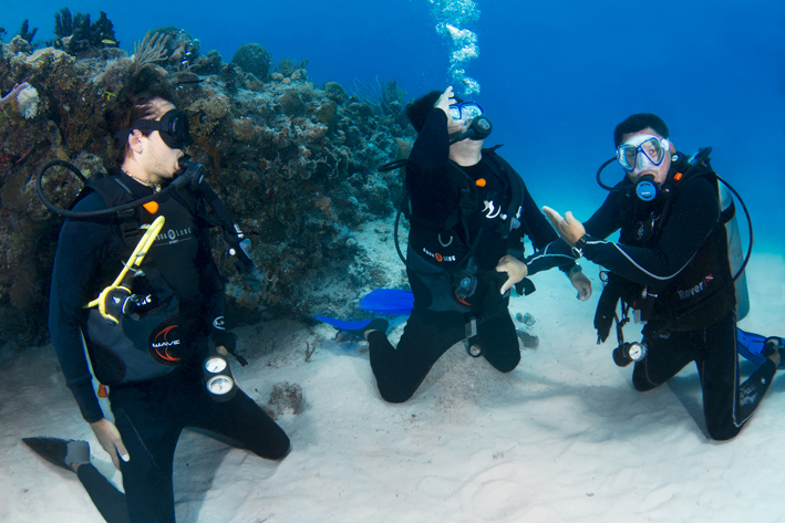 PRACTICE OF DIVING EXERCICES