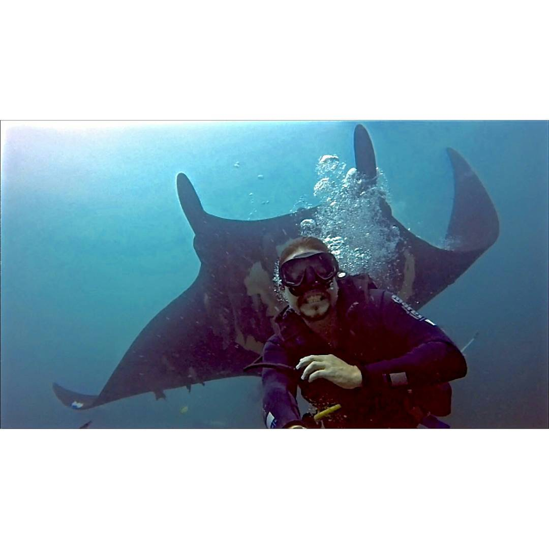 Buceo con Mantas Gigantes