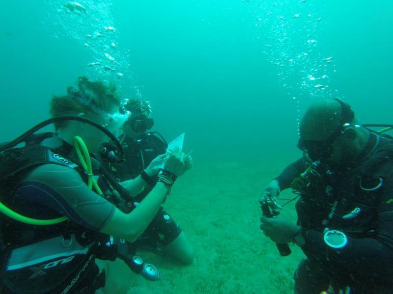 AOW Deep Dive