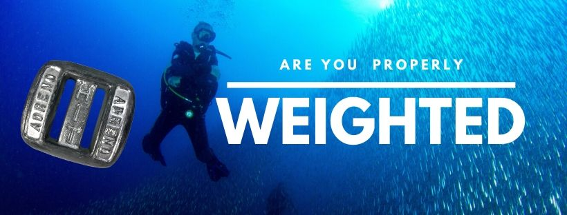 are-you-properly-weighted-for-oyur-dive_orig