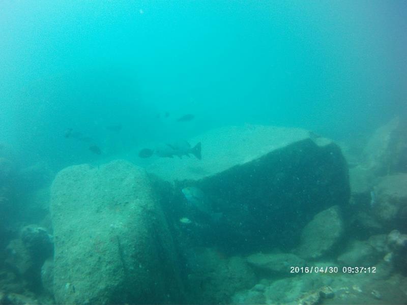 Boulders_fish