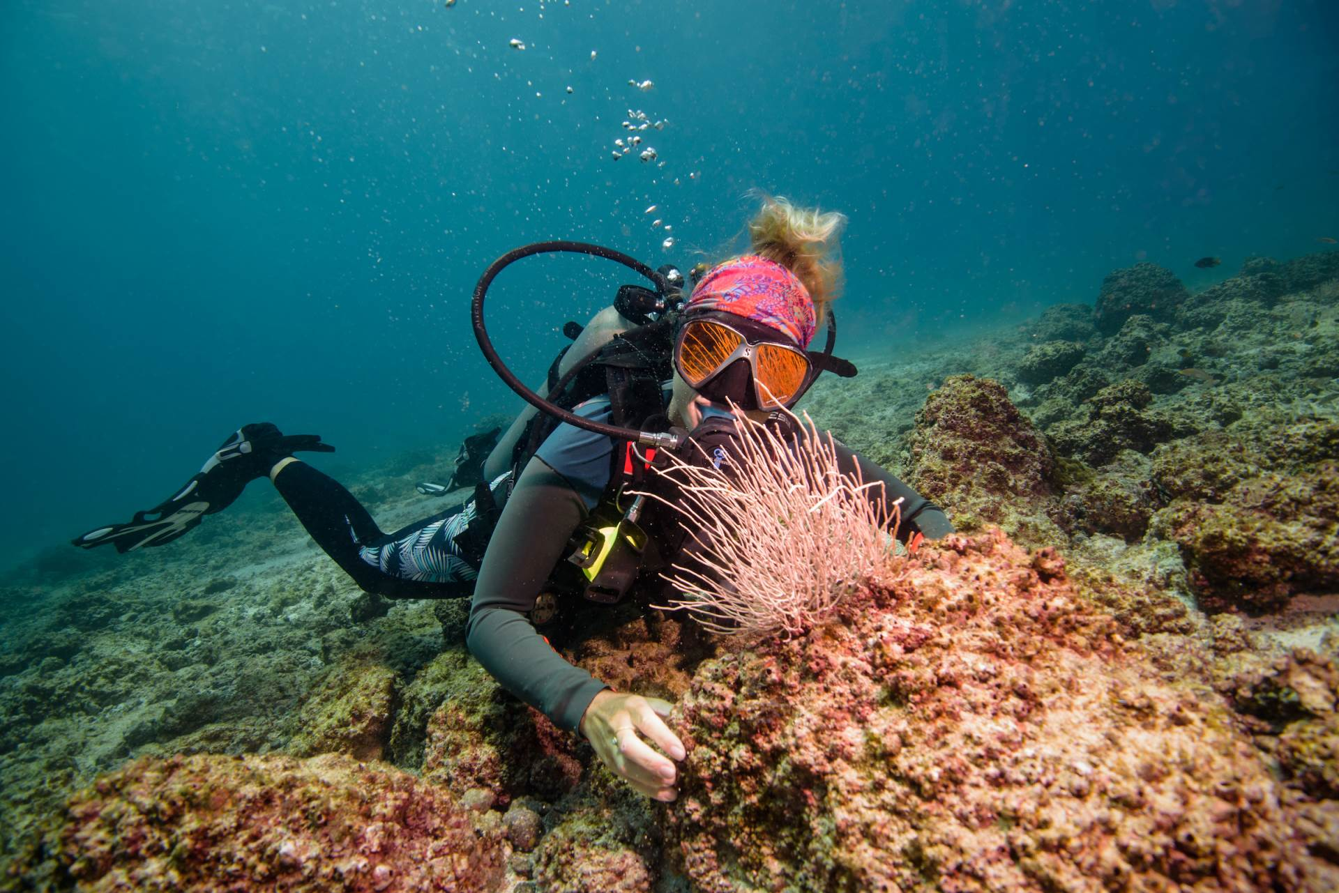 Come and enjoy diving in one of the best 10 diving sites of Costa Rica