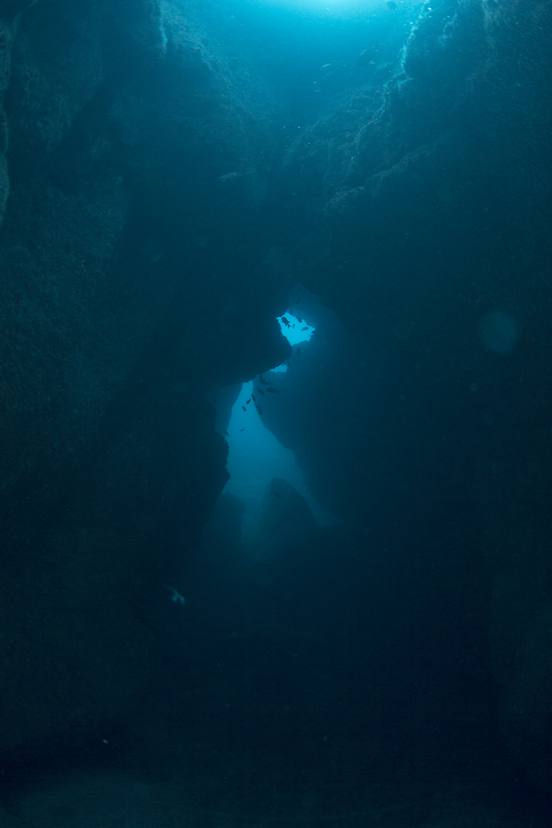 This is considered one of the most famous dive sites in Mauritius. It has an interesting formation but its a rather small site, with very little to non existent corral and marine life. The little cave is quite cool, but only around 10 metres long.