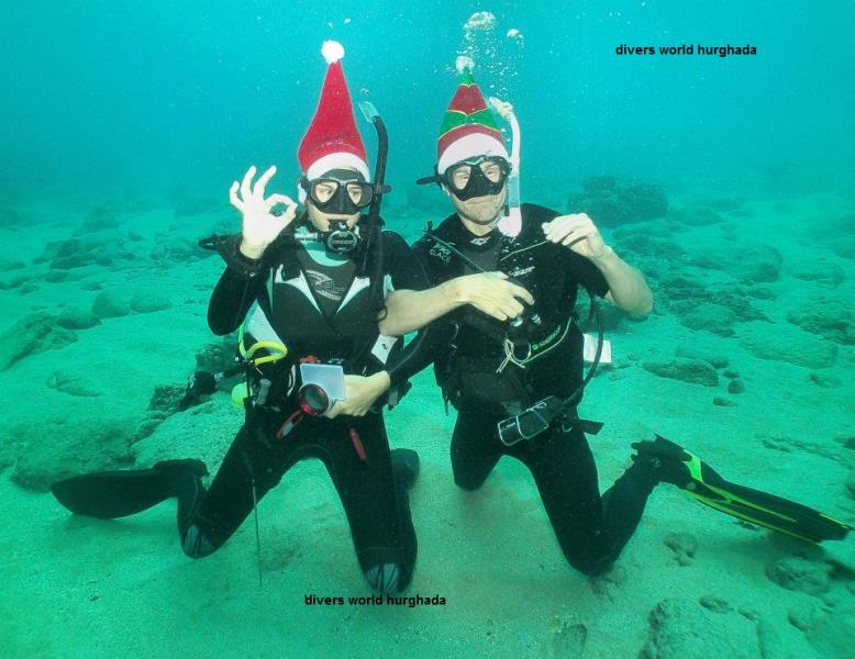 Christmas_day_dive_2