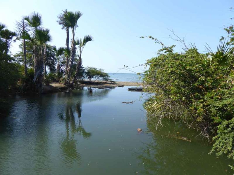Coast of Timor Leste