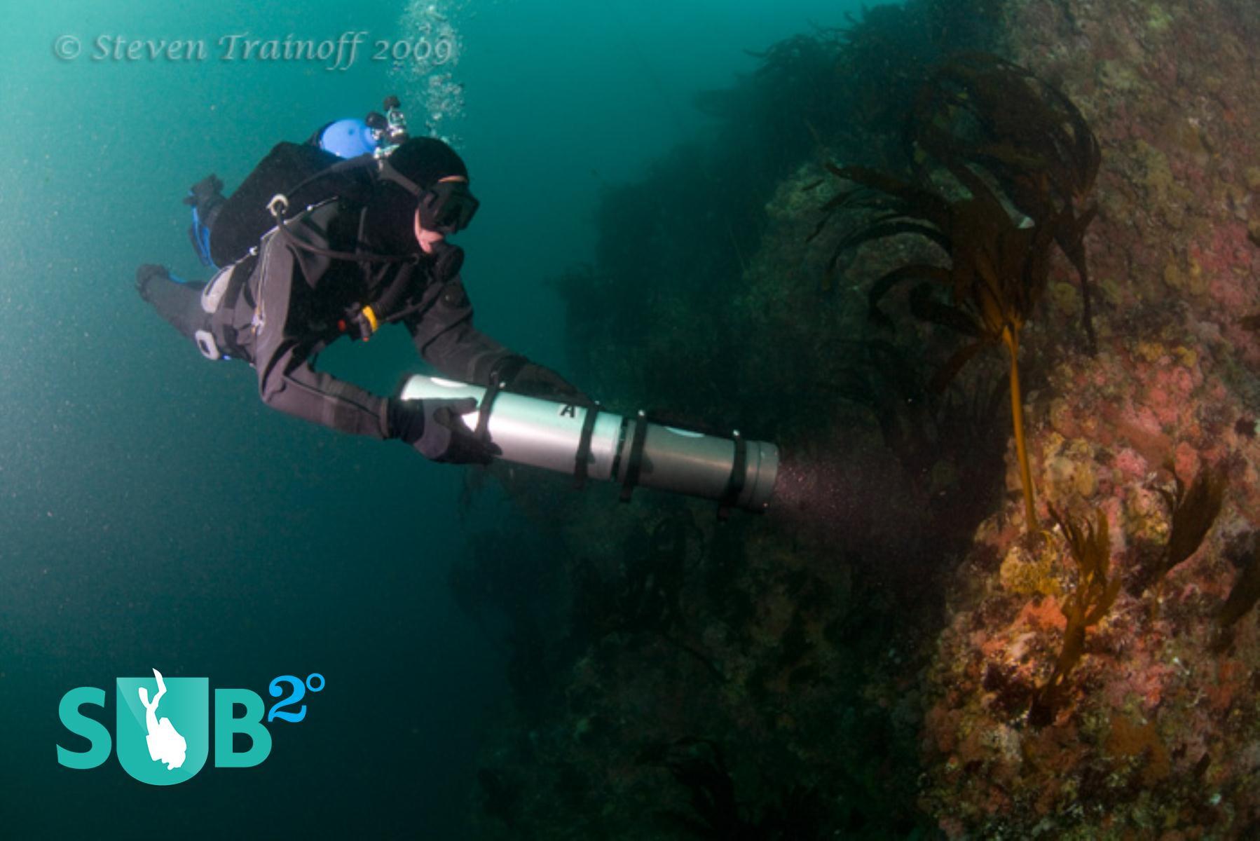 Illuminating the Deep Blue Sea