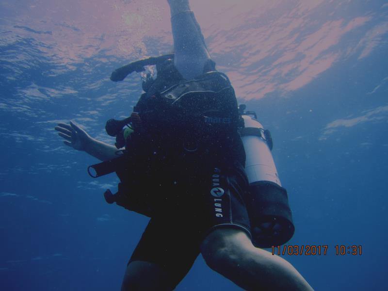 Diver 5