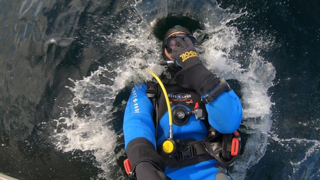 Diversselfie