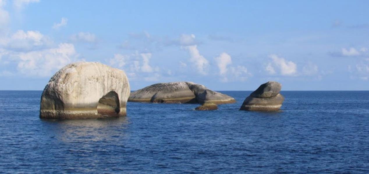 Diving Courses in Phuket at All4Diving