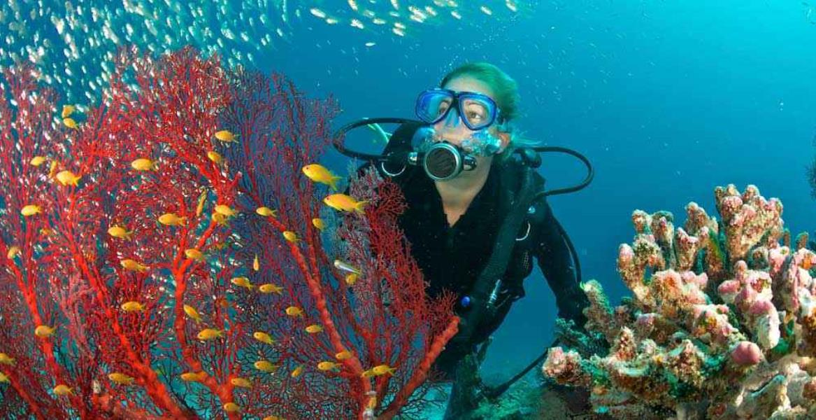 Diving in Theodorou Island and Kalathas Cave!