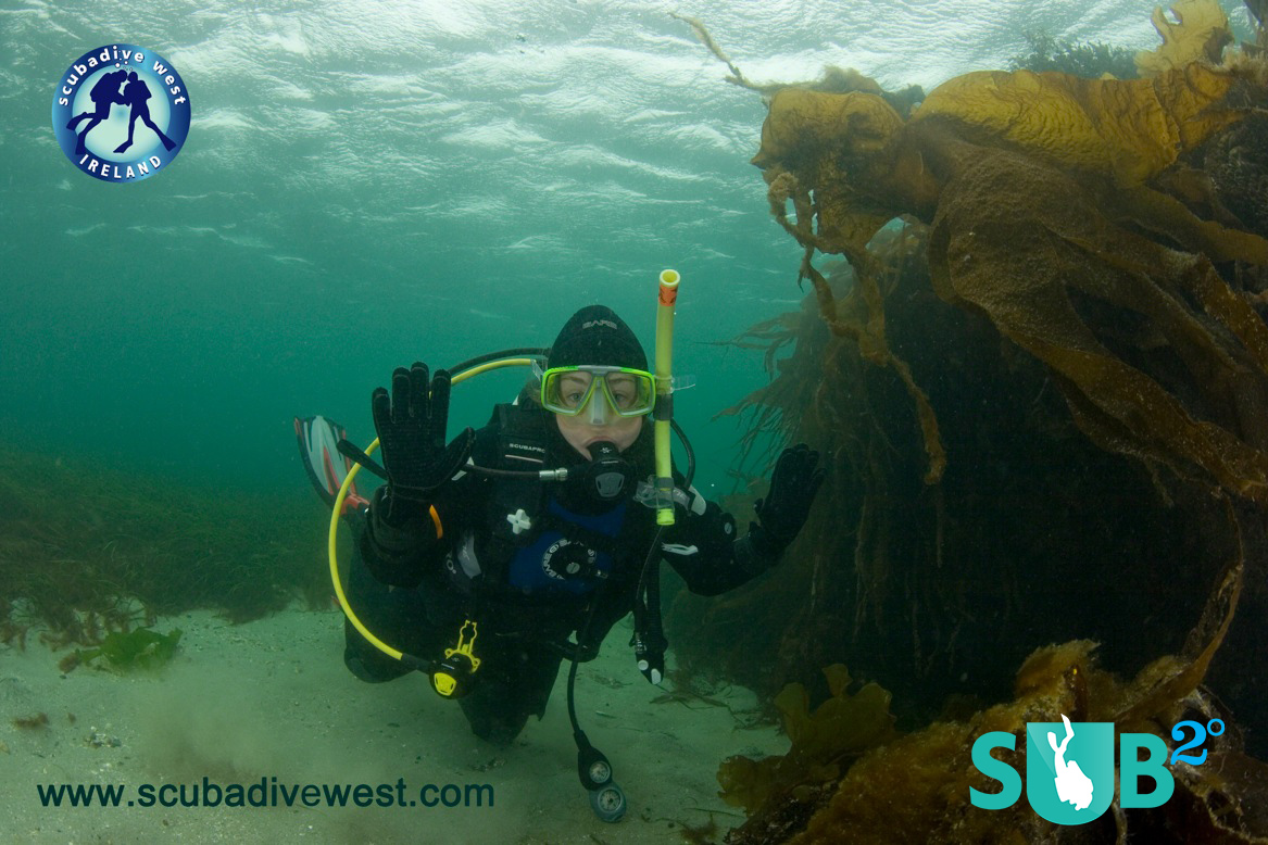 Introducing children to the world of diving is a rewarding experience for all