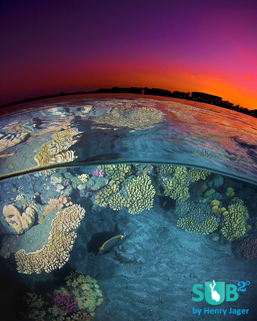 A red sky in combination with the blue water: Taken shortly after the sunset at the colorful reef at the Red Sea in Egypt.
