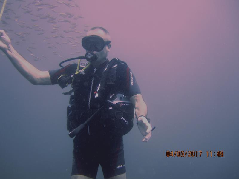 End dive 1