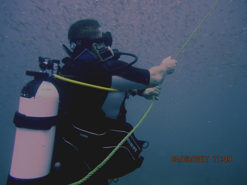 End Dive