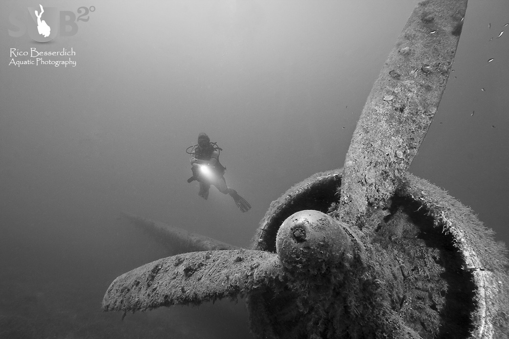 For underwater photography, the morning hours work best. This shot was made in afternoon, with decreasing uw visibility.
